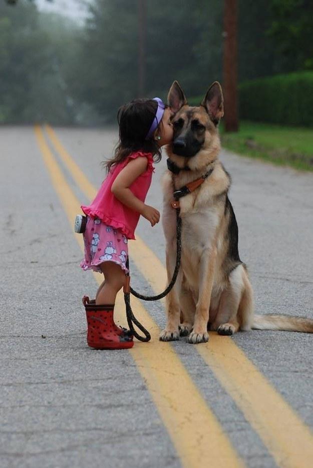 21-Razões-pelos-quais-você-deve-ser-grato-ao-seu-cachorro-Blog-Animal (12)