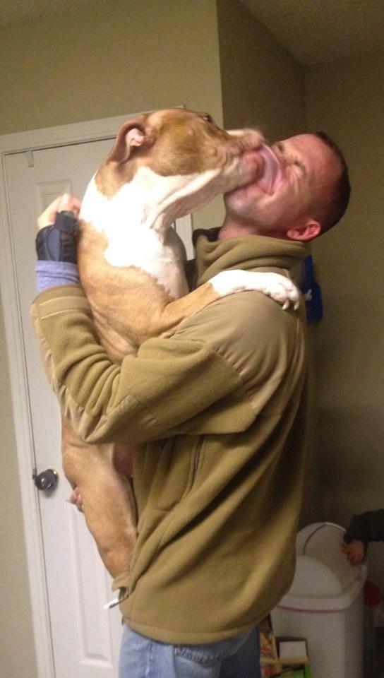 21-Razões-pelos-quais-você-deve-ser-grato-ao-seu-cachorro-Blog-Animal (15)