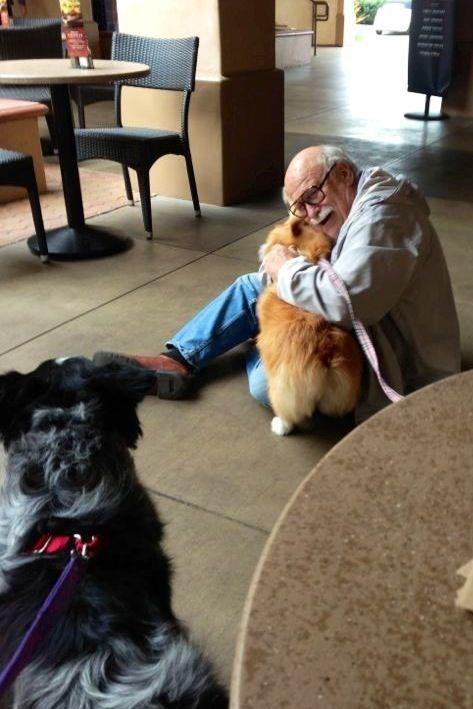 21-Razões-pelos-quais-você-deve-ser-grato-ao-seu-cachorro-Blog-Animal (2)