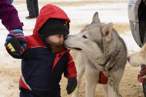 21-Razões-pelos-quais-você-deve-ser-grato-ao-seu-cachorro-Blog-Animal (4)
