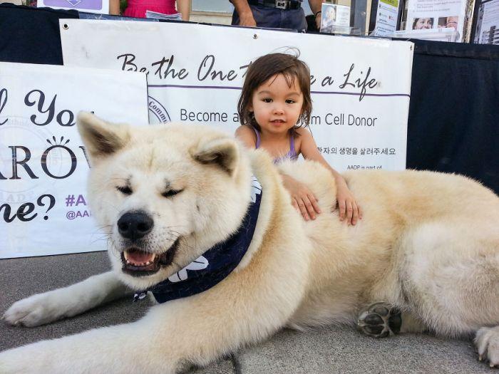 Cães grandes e crianças pequenas (12)