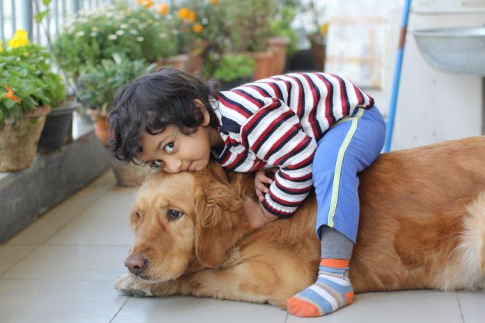 Cães grandes e crianças pequenas (16)