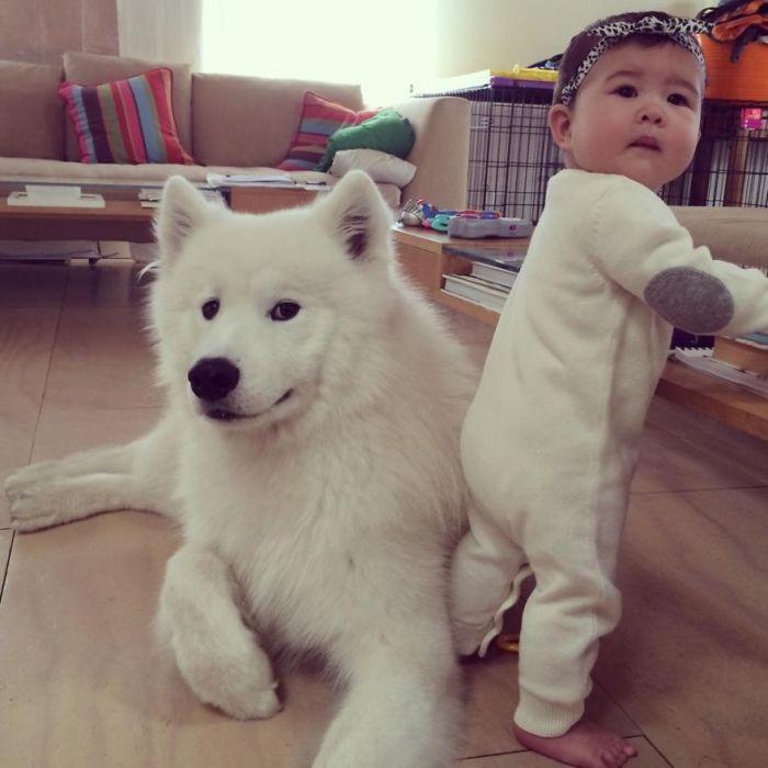 Cães grandes e crianças pequenas (19)