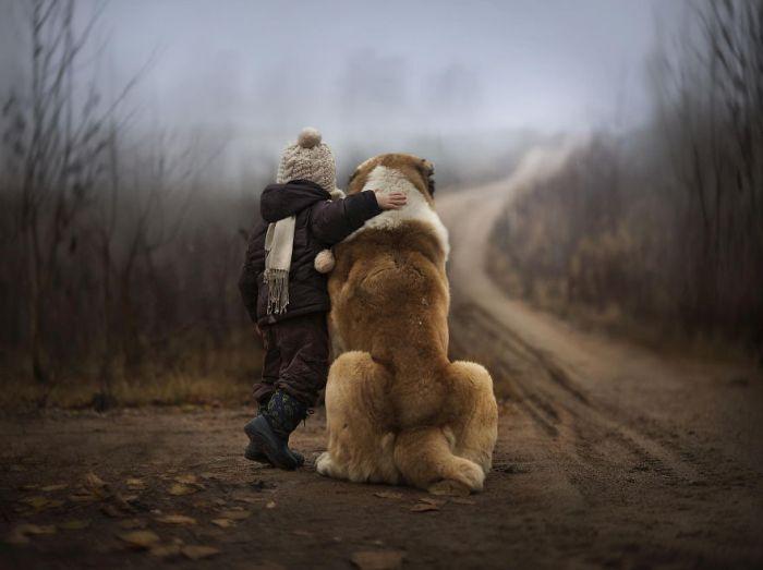 Cães grandes e crianças pequenas (28)