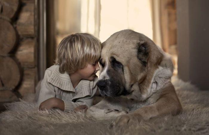 Cães grandes e crianças pequenas (29)