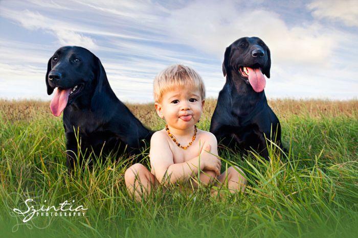 Cães grandes e crianças pequenas (40)