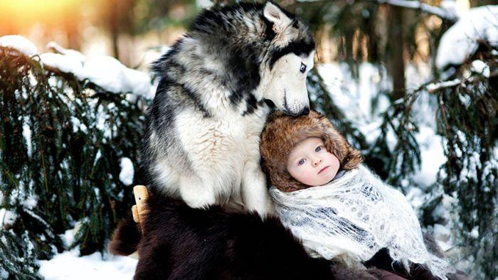Cães grandes e crianças pequenas (6)