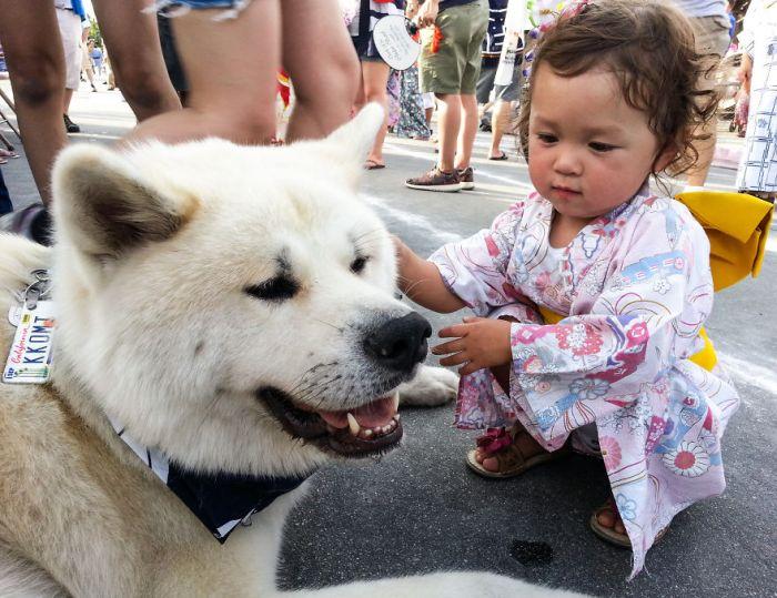 Cães grandes e crianças pequenas (9)