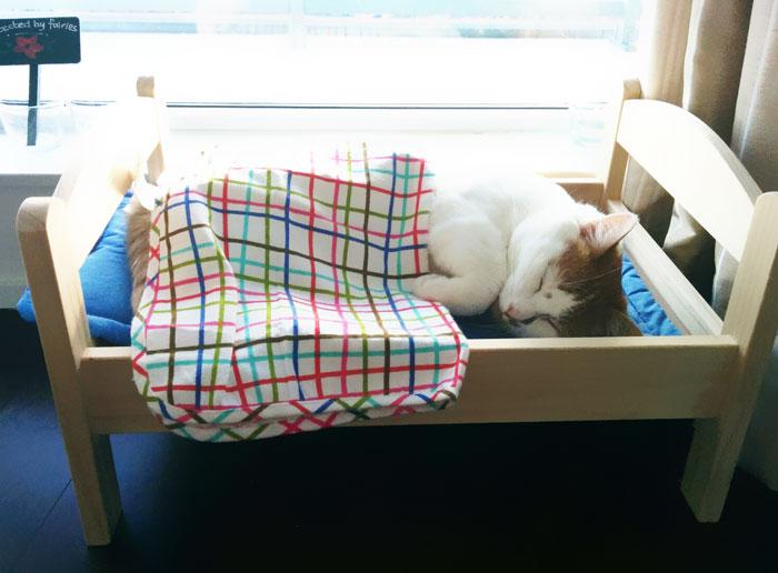 Camas de bonecas transformadas em camas para gatos (4)