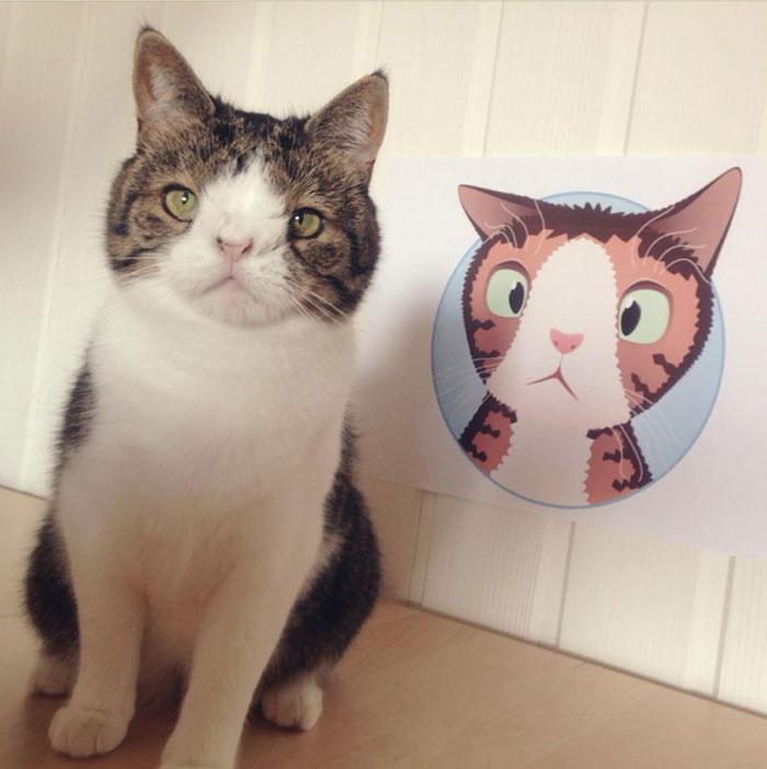 Conheça-Monty-O-gato-adorável-com-um-rosto-incomum-Blog-Animal (10)