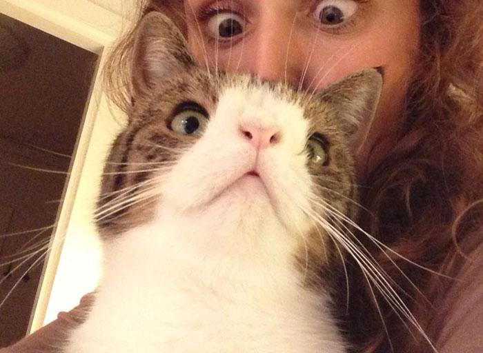 Conheça-Monty-O-gato-adorável-com-um-rosto-incomum-Blog-Animal (9)