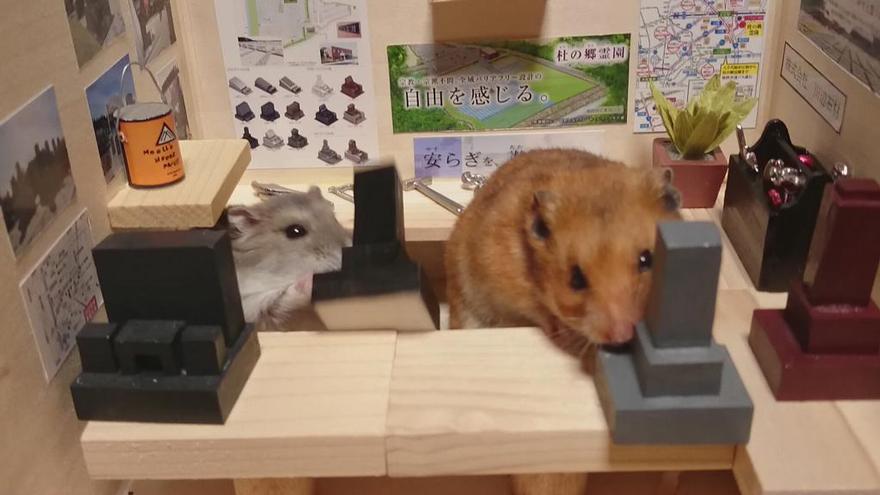 Hamster barman servindo mini alimentos e bebidas (11)
