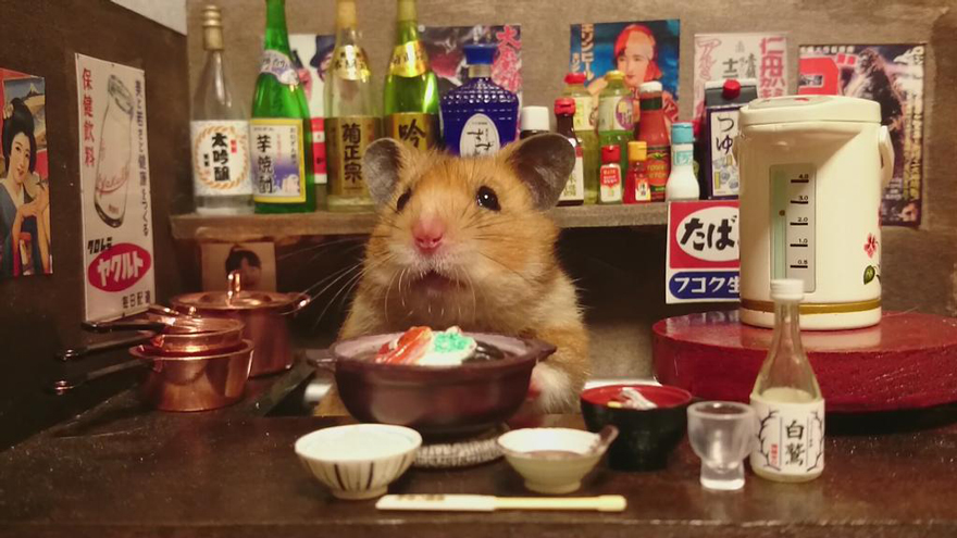 Hamster barman servindo mini alimentos e bebidas (12)