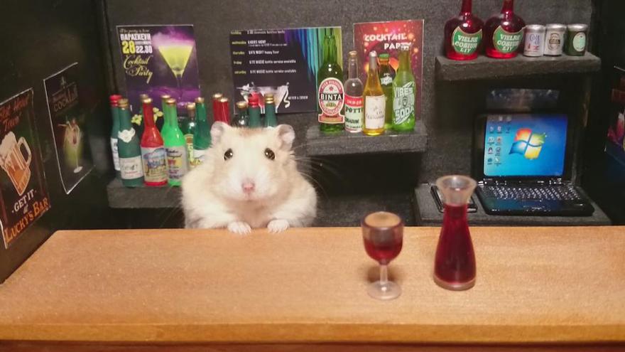Hamster barman servindo mini alimentos e bebidas