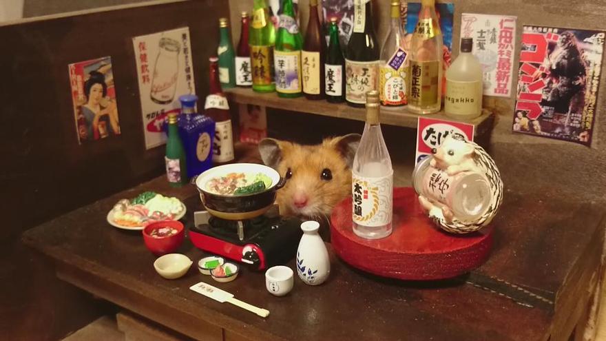Hamster barman servindo mini alimentos e bebidas (9)