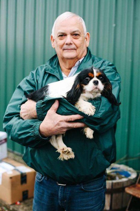 Cães resgatados de fazenda (19)