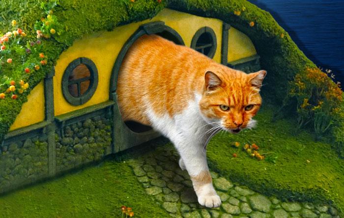 Casinha para gato de O Hobbit (16)