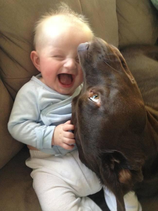 Crianças-que-aprenderam-cedo-que-os-cães-são-nossos-melhores-amigos-Blog-Animal (10)