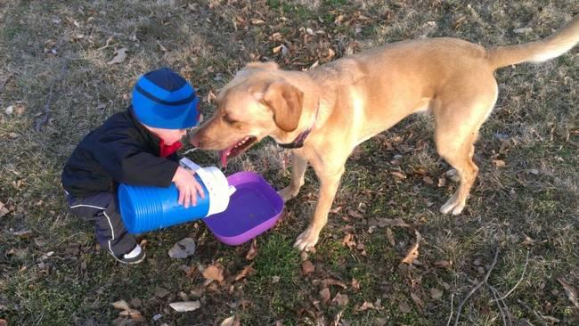 Crianças-que-aprenderam-cedo-que-os-cães-são-nossos-melhores-amigos-Blog-Animal (11)