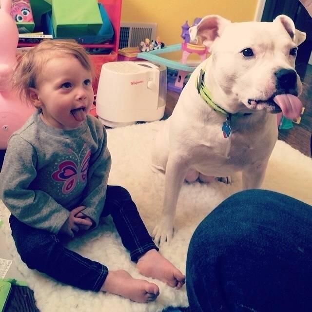 Crianças-que-aprenderam-cedo-que-os-cães-são-nossos-melhores-amigos-Blog-Animal (12)