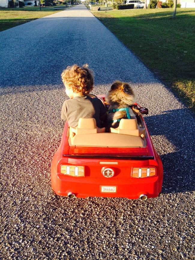 Crianças-que-aprenderam-cedo-que-os-cães-são-nossos-melhores-amigos-Blog-Animal (13)