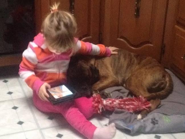 Crianças-que-aprenderam-cedo-que-os-cães-são-nossos-melhores-amigos-Blog-Animal (14)
