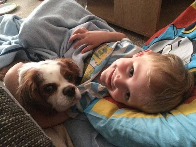 Crianças-que-aprenderam-cedo-que-os-cães-são-nossos-melhores-amigos-Blog-Animal (15)