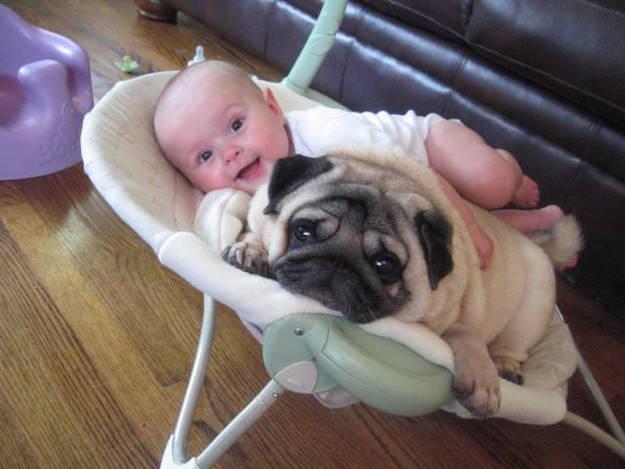 Crianças-que-aprenderam-cedo-que-os-cães-são-nossos-melhores-amigos-Blog-Animal (2)