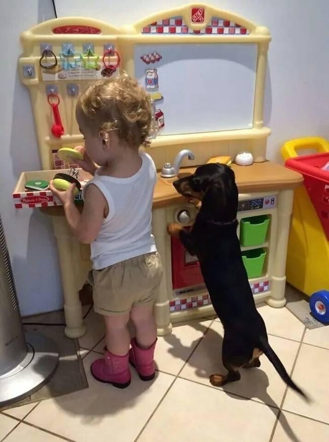 Crianças-que-aprenderam-cedo-que-os-cães-são-nossos-melhores-amigos-Blog-Animal (4)