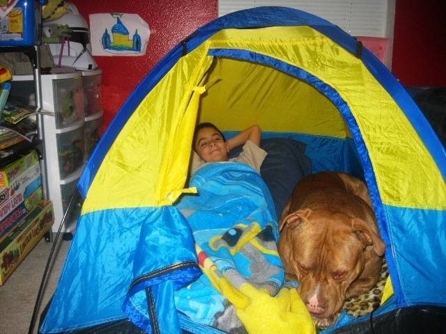 Crianças-que-aprenderam-cedo-que-os-cães-são-nossos-melhores-amigos-Blog-Animal (7)