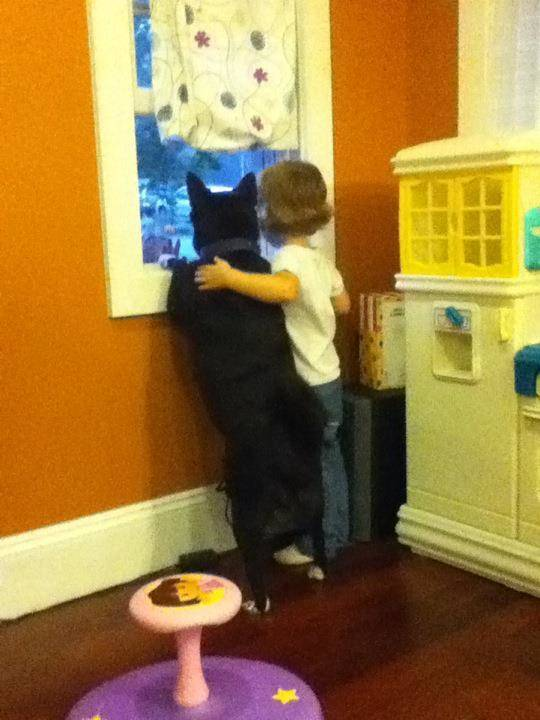 Crianças-que-aprenderam-cedo-que-os-cães-são-nossos-melhores-amigos-Blog-Animal (8)
