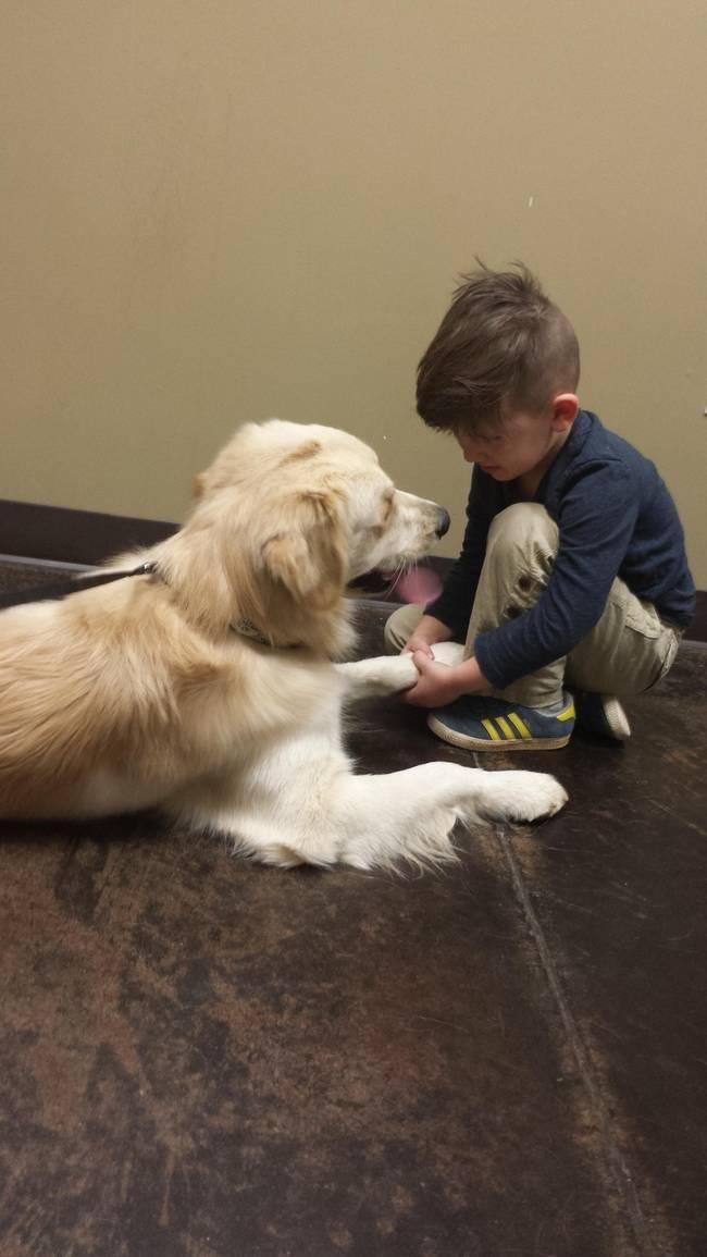 Crianças-que-aprenderam-cedo-que-os-cães-são-nossos-melhores-amigos-Blog-Animal (9)