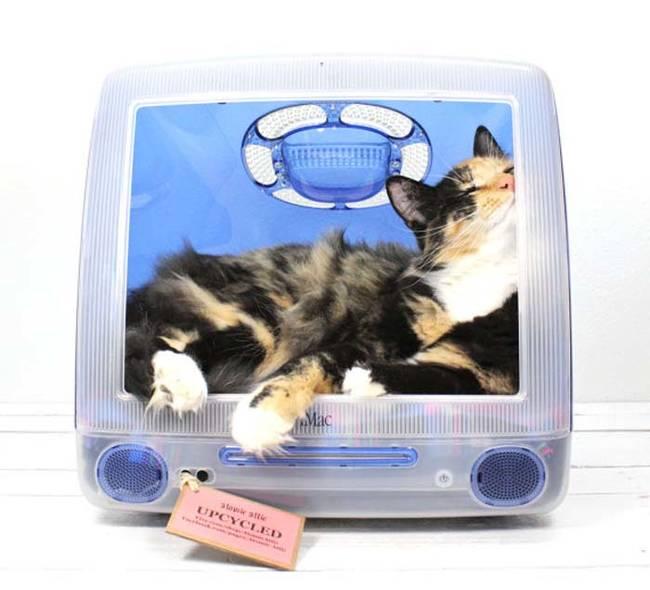 Ideias-criativas-para-fazer-casinhas-e-caminhas-para-cães-e-gatos-Blog-Animal (15)
