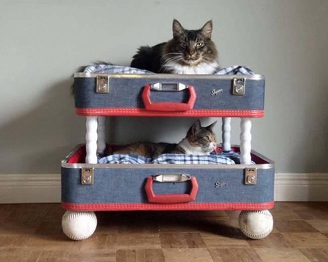 Ideias-criativas-para-fazer-casinhas-e-caminhas-para-cães-e-gatos-Blog-Animal (16)