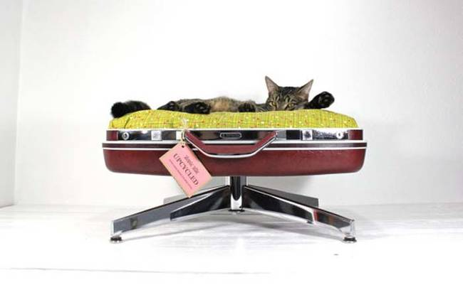 Ideias-criativas-para-fazer-casinhas-e-caminhas-para-cães-e-gatos-Blog-Animal (17)
