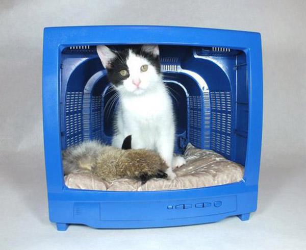 Ideias-criativas-para-fazer-casinhas-e-caminhas-para-cães-e-gatos-Blog-Animal (7)