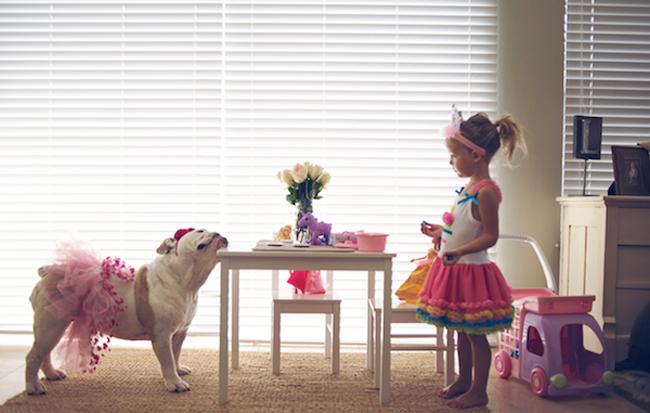 Coisas-que-só-quem-tem-um-Bulldog-entende (1)