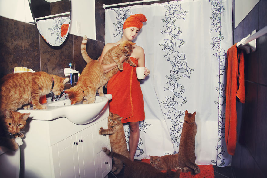 Fotos loucas de Cat Lovers (14)