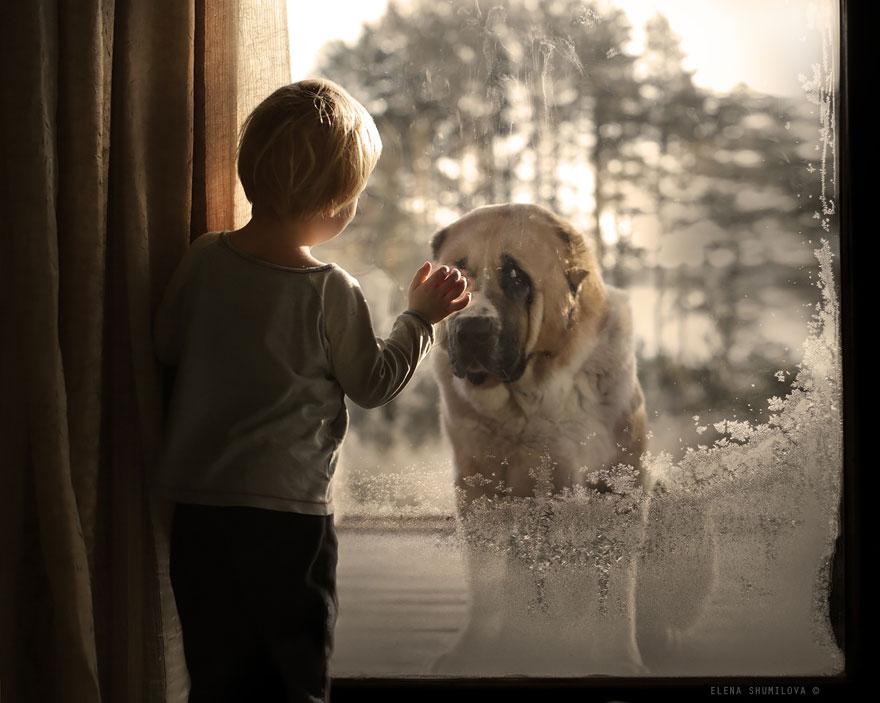 Mãe russa tira incríveis fotos de animais com seus filhos (3)