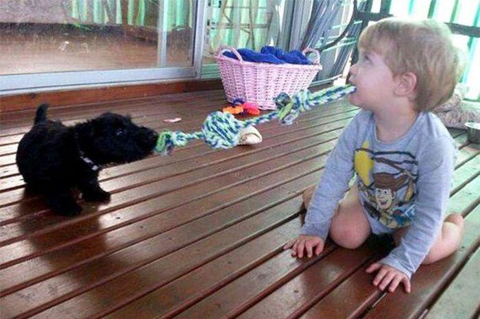 20-Crianças-que-pensam-que-são-animais (4)