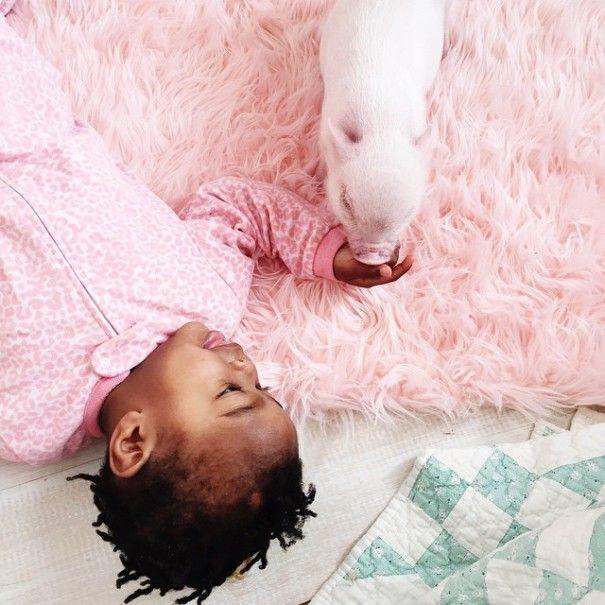 Este porquinho é o melhor amigo dessa garotinha (10)