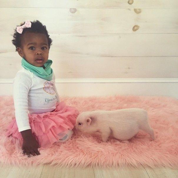 Este porquinho é o melhor amigo dessa garotinha (12)