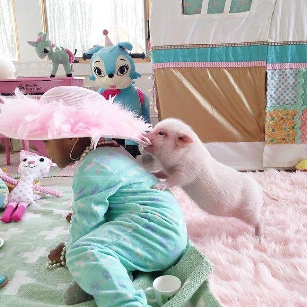 Este porquinho é o melhor amigo dessa garotinha (14)