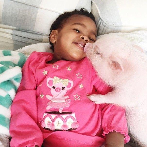 Este porquinho é o melhor amigo dessa garotinha (17)