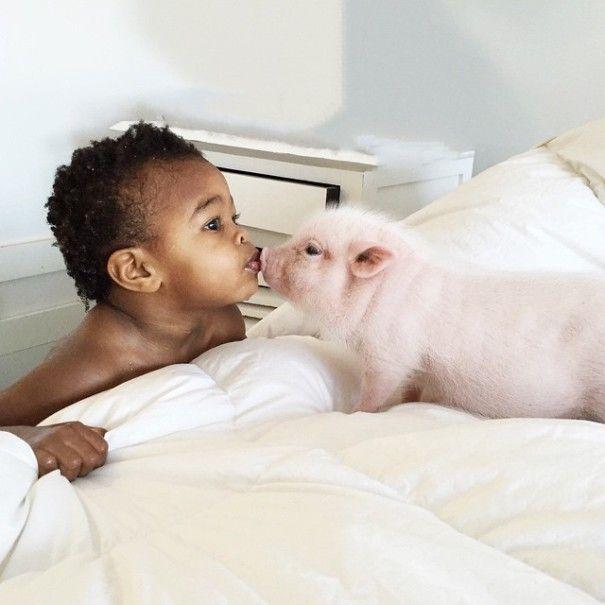 Este porquinho é o melhor amigo dessa garotinha (2)