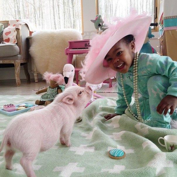 Este porquinho é o melhor amigo dessa garotinha (5)