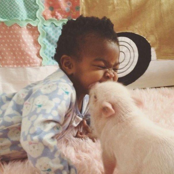 Este porquinho é o melhor amigo dessa garotinha (8)