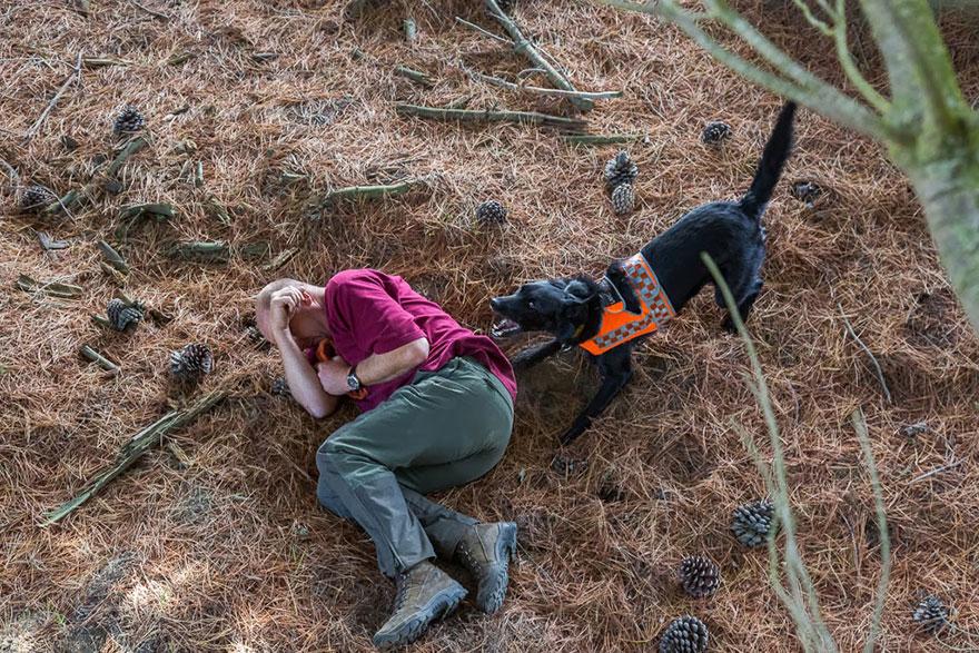 Fotógrafo tira fotos de cães trabalhando duro (9)