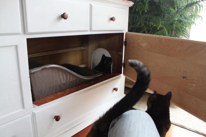 Uma-boa-ideia-para-esconder-a-caixa-de-areia-do-seu-gato (13)