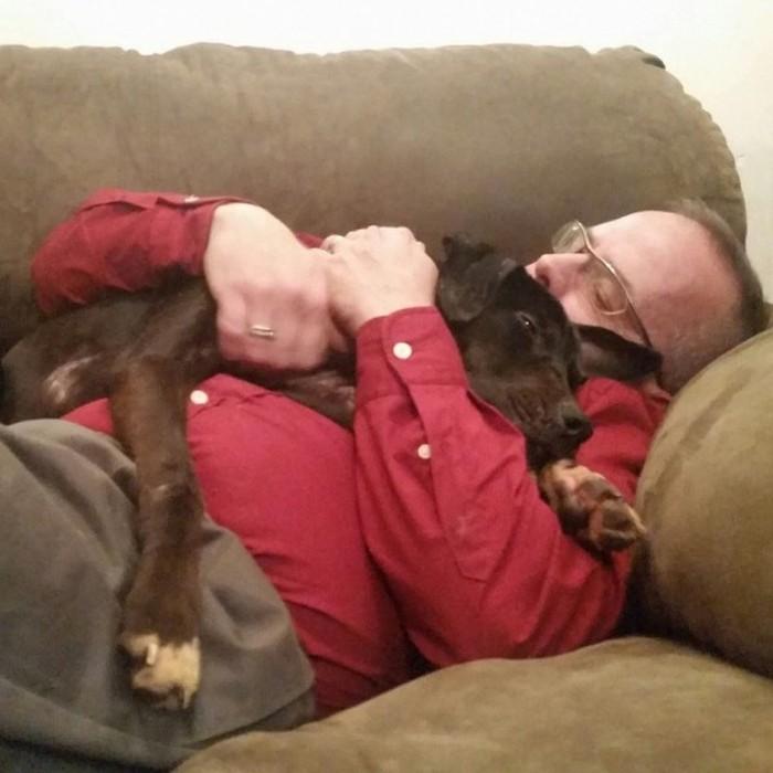 Cão abandonado é resgatado (11)